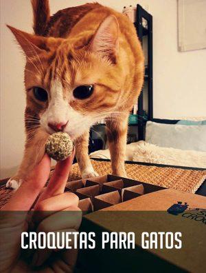 croquetas_para_gatos