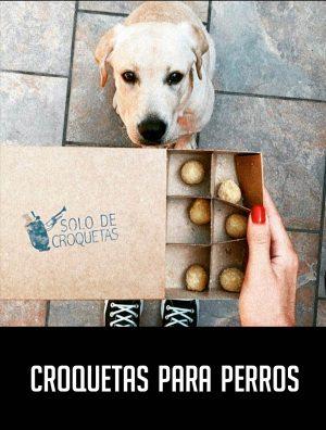 croquetas_para_perros